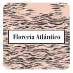 "<a href=""http://www.facebook.com/FloreriaAtlantico"" target=""_blank""><span style=""font-size: 15px; color: #ffffff;"">Floreria Atlantico</a>"
