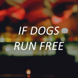 "<a href=""http://www.ifdogsrunfree.com/"" target=""_blank""><span style=""font-size: 15px; color: #ffffff;"">If Dogs Run Free</a>"
