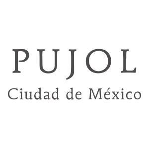 "<a href=""http://www.pujol.com.mx/en/"" target=""_blank""><span style=""font-size: 15px; color: #ffffff;"">Restaurante Pujol</a>"