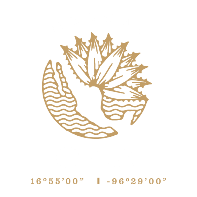 Mezcal Local Logo 01
