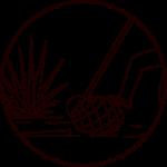 Mezcal Local Production Process 02 - Harvest