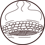 Mezcal Local Production Process 03 - Cooking