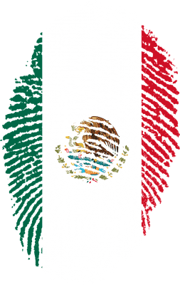 This is a fingerprint in Mexican colors for the Dr. Sours website