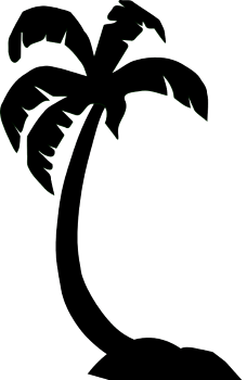 This is a baclk/white picture of a palm silhouette