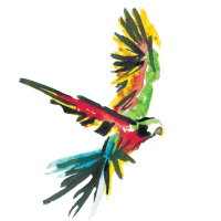 Dr. Sours Partner - Ron Libertad White Rum - Bird Pictogram 01