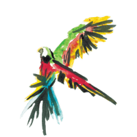 Dr. Sours Partner - Ron Libertad White Rum - Bird Pictogram 02